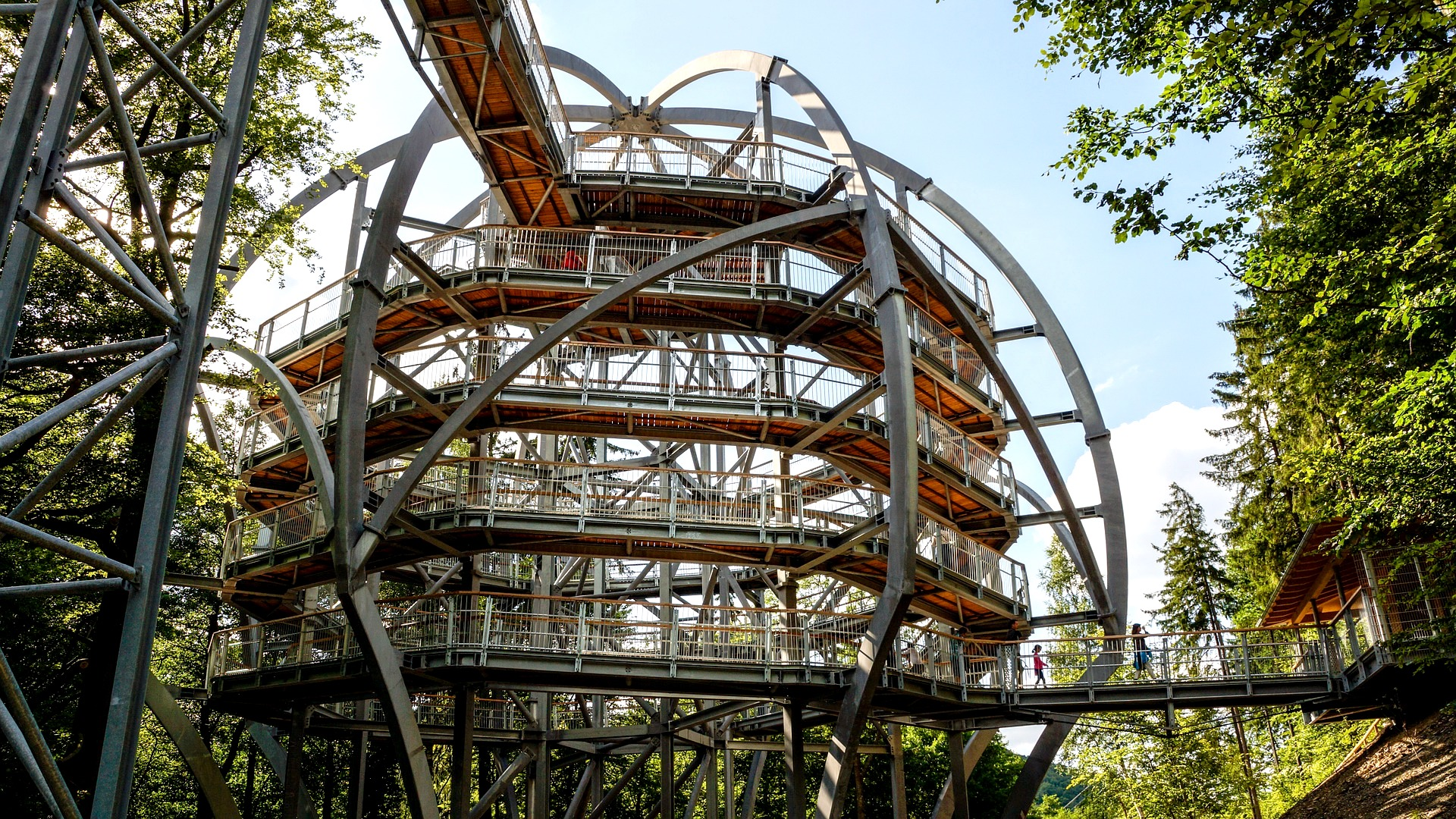 Treetop walkway lipno, nature, czech republic, outdoor activities, hidden spot, private tour, english speaking guide, trip